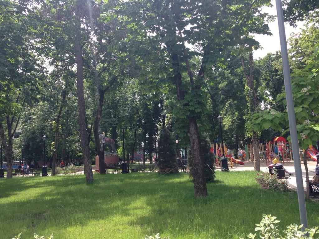 Krasnodar_09