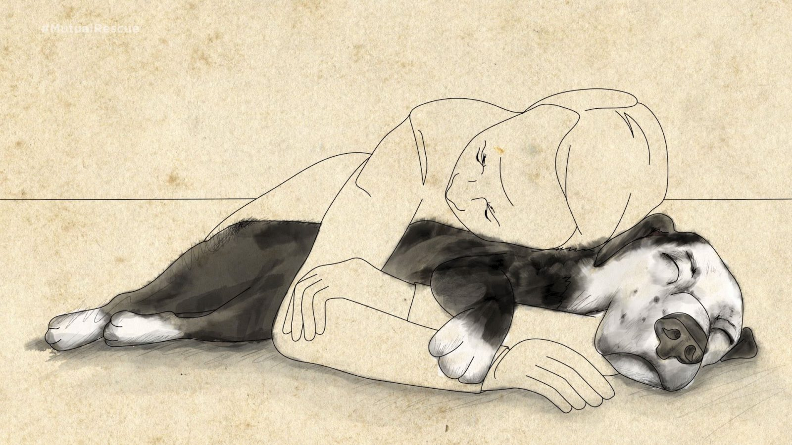 История о том, как пес спас жизнь своему хозяину