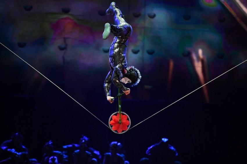 """Микрокосмос у наших ног. Цирк Дю Солей везет новую программу """"OVO"""""""